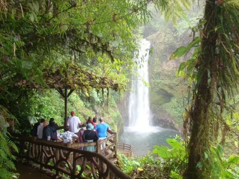 Tour La Paz Waterfall Gardens